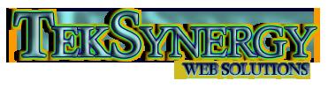 Teksynergy Logo